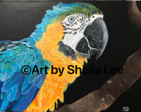 """Peaches"" the Parrot SOLD"