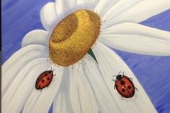 SOLD Ladybug Daisy