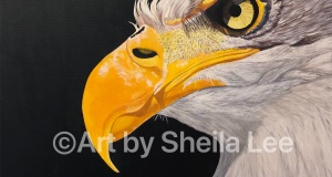 Arnett-the-Eagle