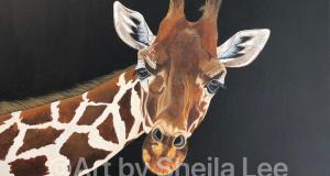 Twiggy-the-Giraffe