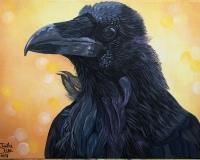 """""""Portrait of a Raven"""""""