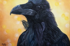 """Portrait of a Raven"""